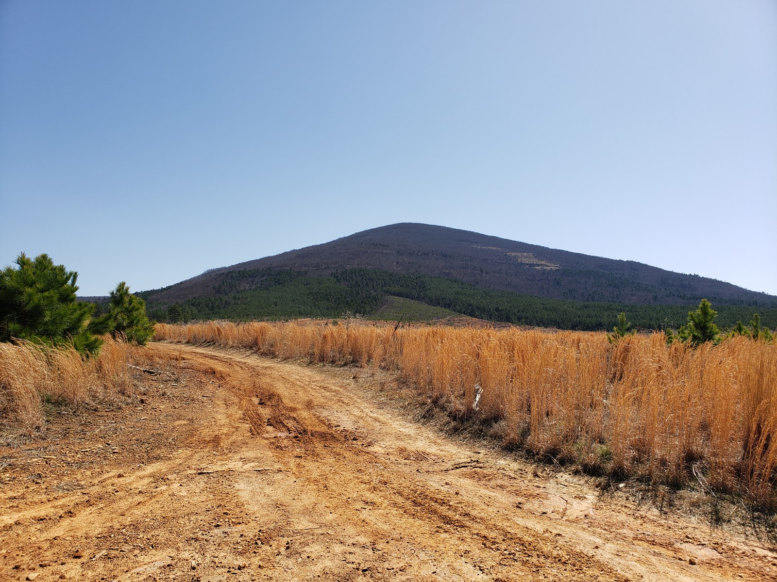 55 Acre Recreational Property on Sugar Loaf Mountain