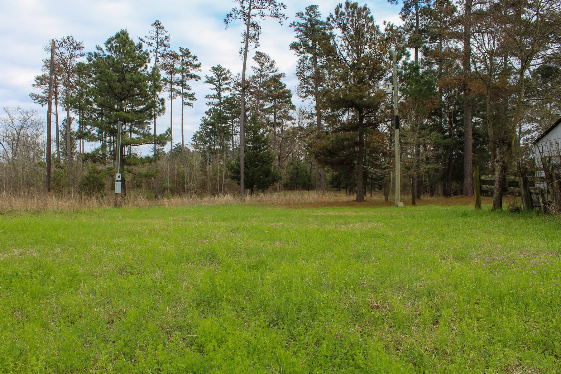 ALMOST 5 ACRES WOOD COUNTY - WINNSBORO TEXAS FOR SALE