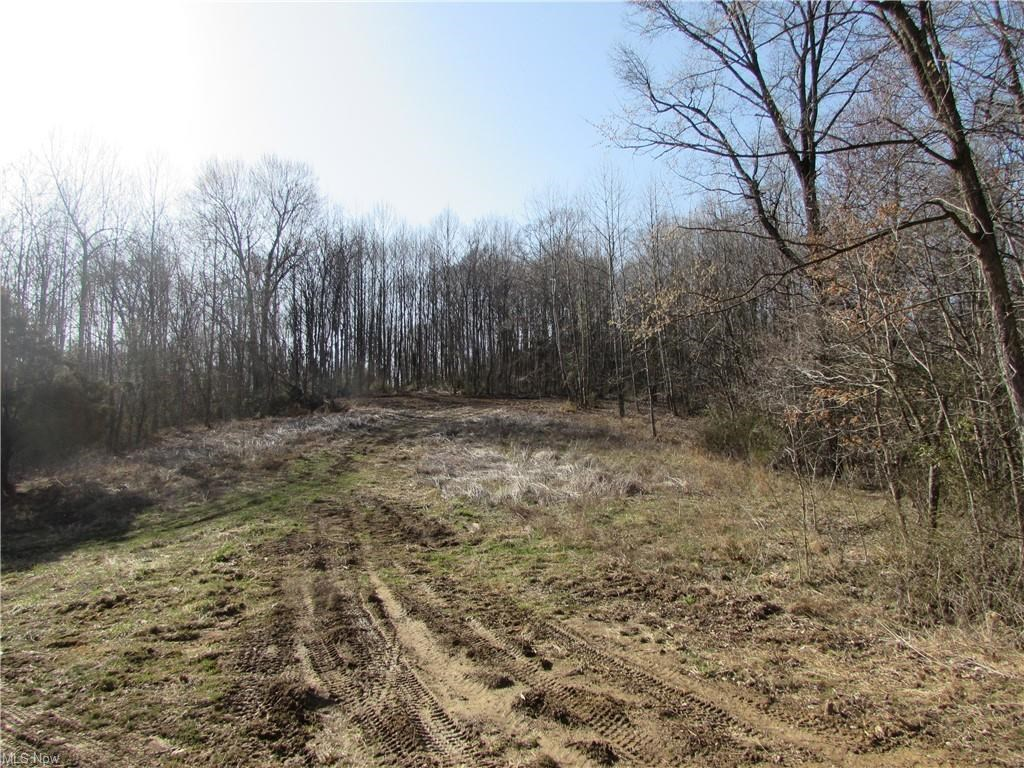 28.710 Acres in Pleasants County WV for Recreation