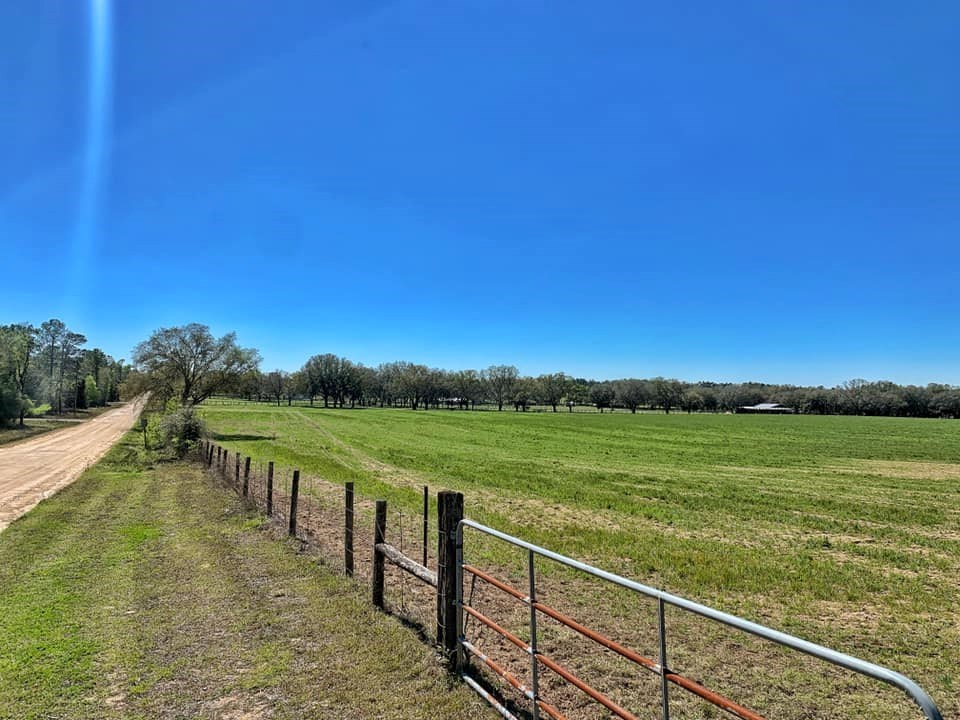 BEAUTIFUL 10+ ACRE TRACT - HOMES ONLY SUBDIVISION