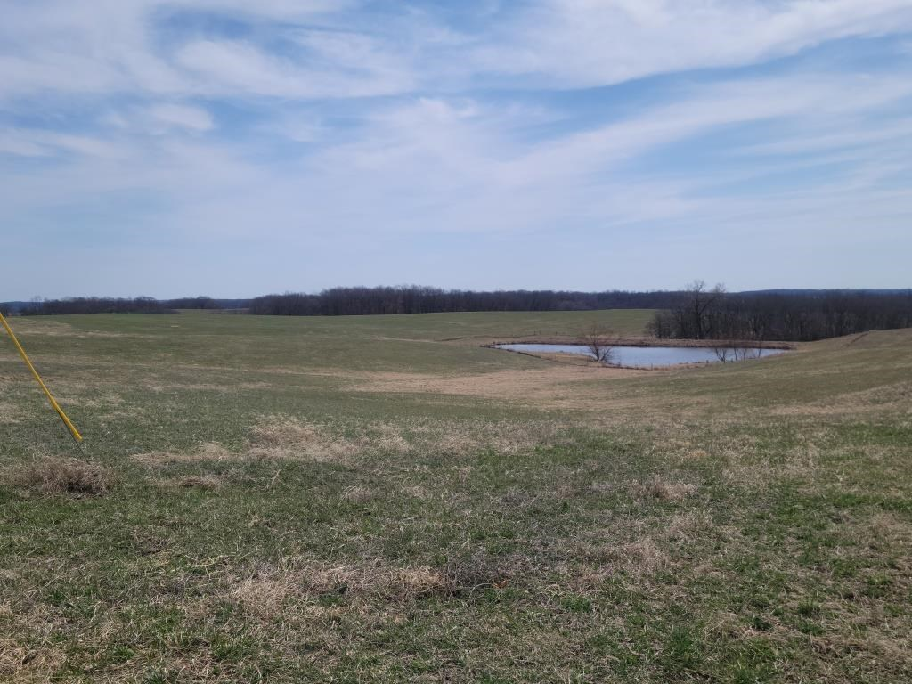 Online Only Land Auction in Sullivan County, MO