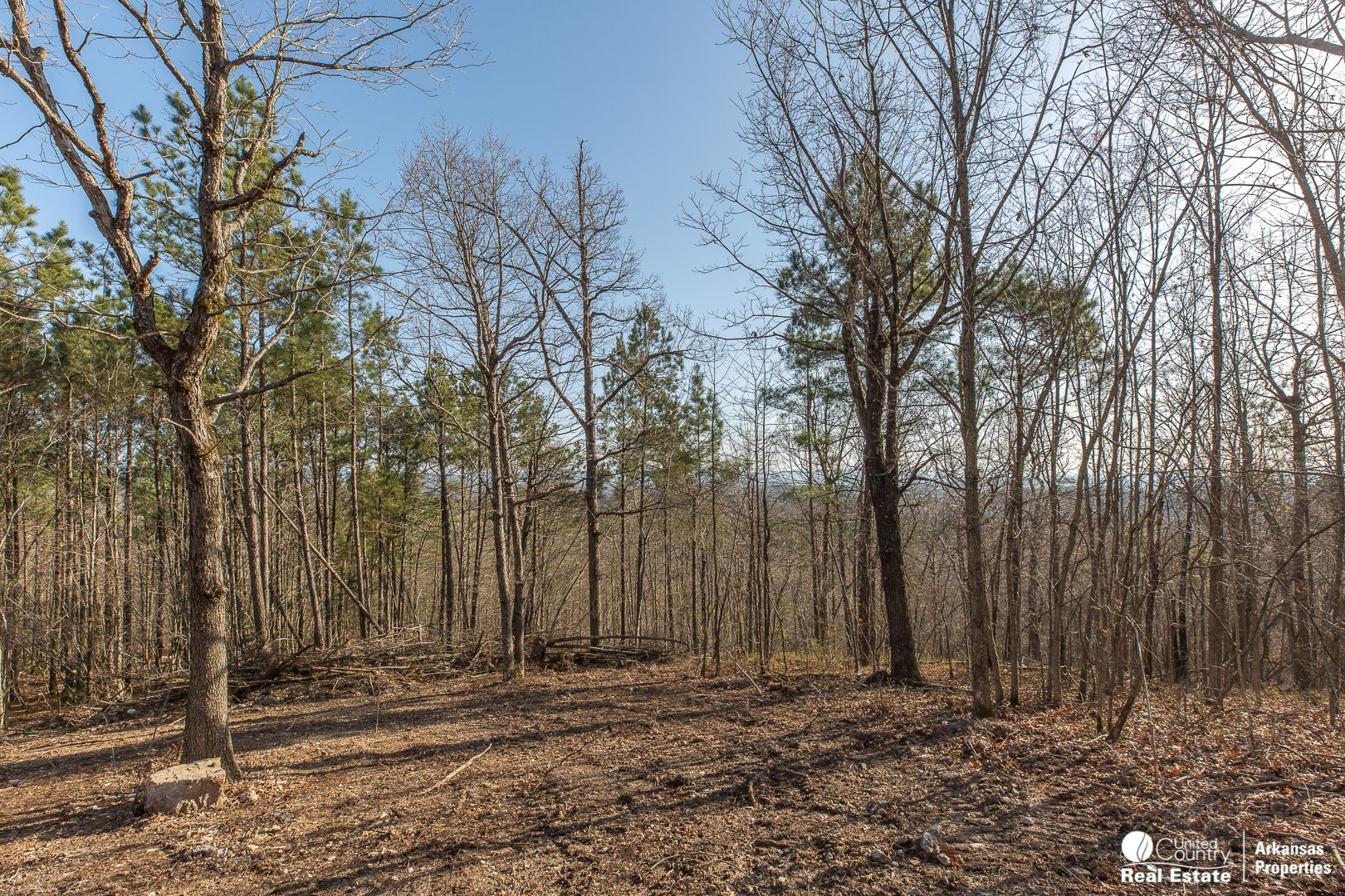 Mountain view building site for sale in Arkansas