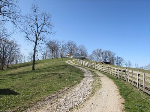 503.26 Acre Working Farm in WV with a Spectacular view!