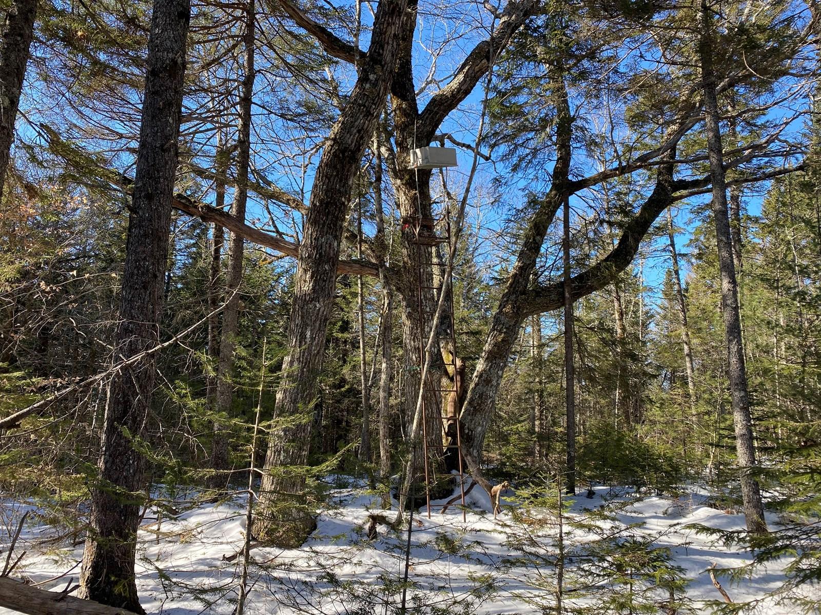 Subdivision lots in Coastal Maine