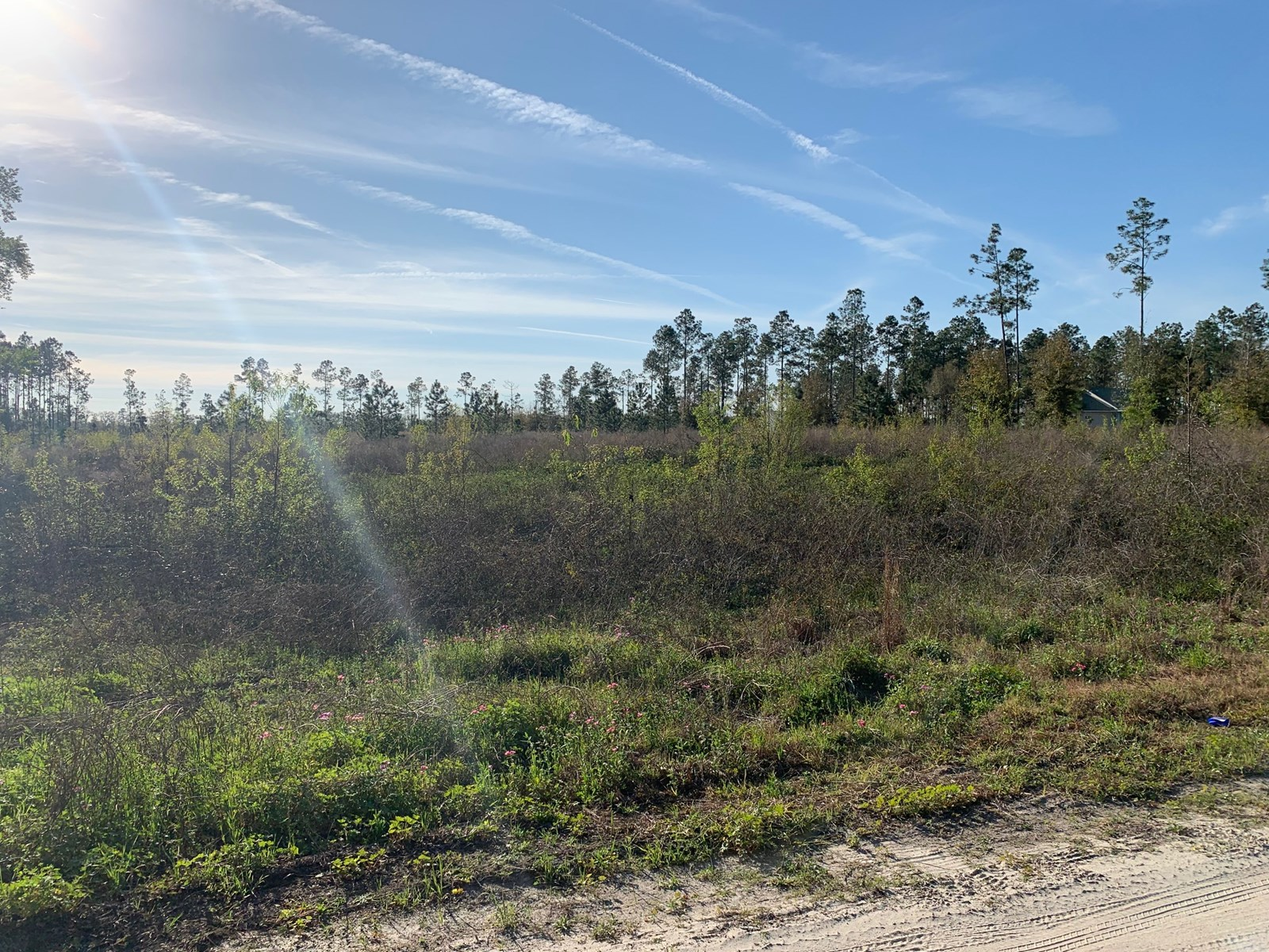 RESIDENTIAL 5 ACRE LOT LOCATED JUST OUTSIDE OF MAYO, FL!!
