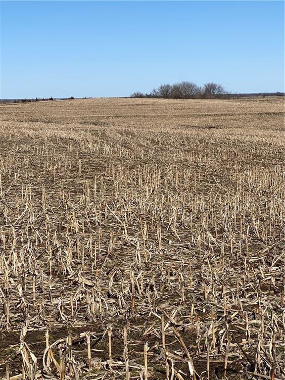84+/- Acres in Dekalb County, Missouri