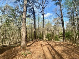 60+ ACRES HENDERSON, PIKE COUNTY