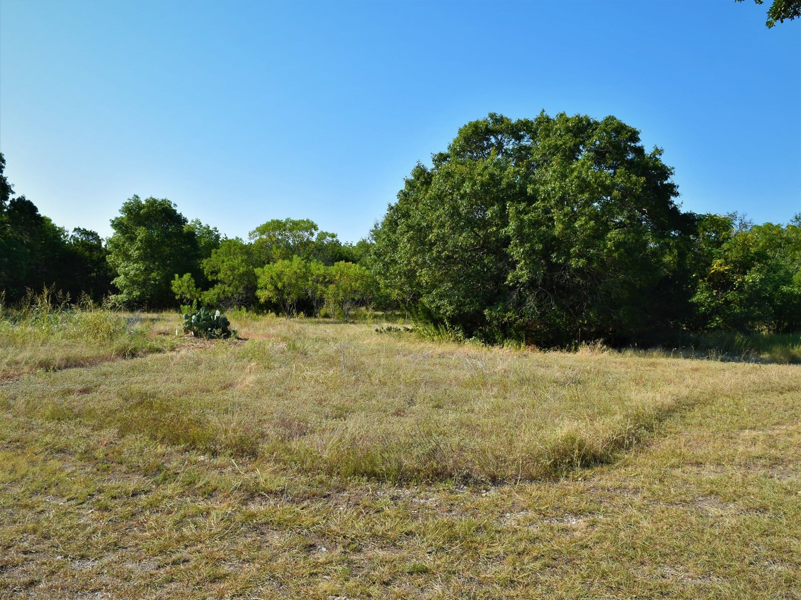 1.27 Acre lot for sale Moody, Tx