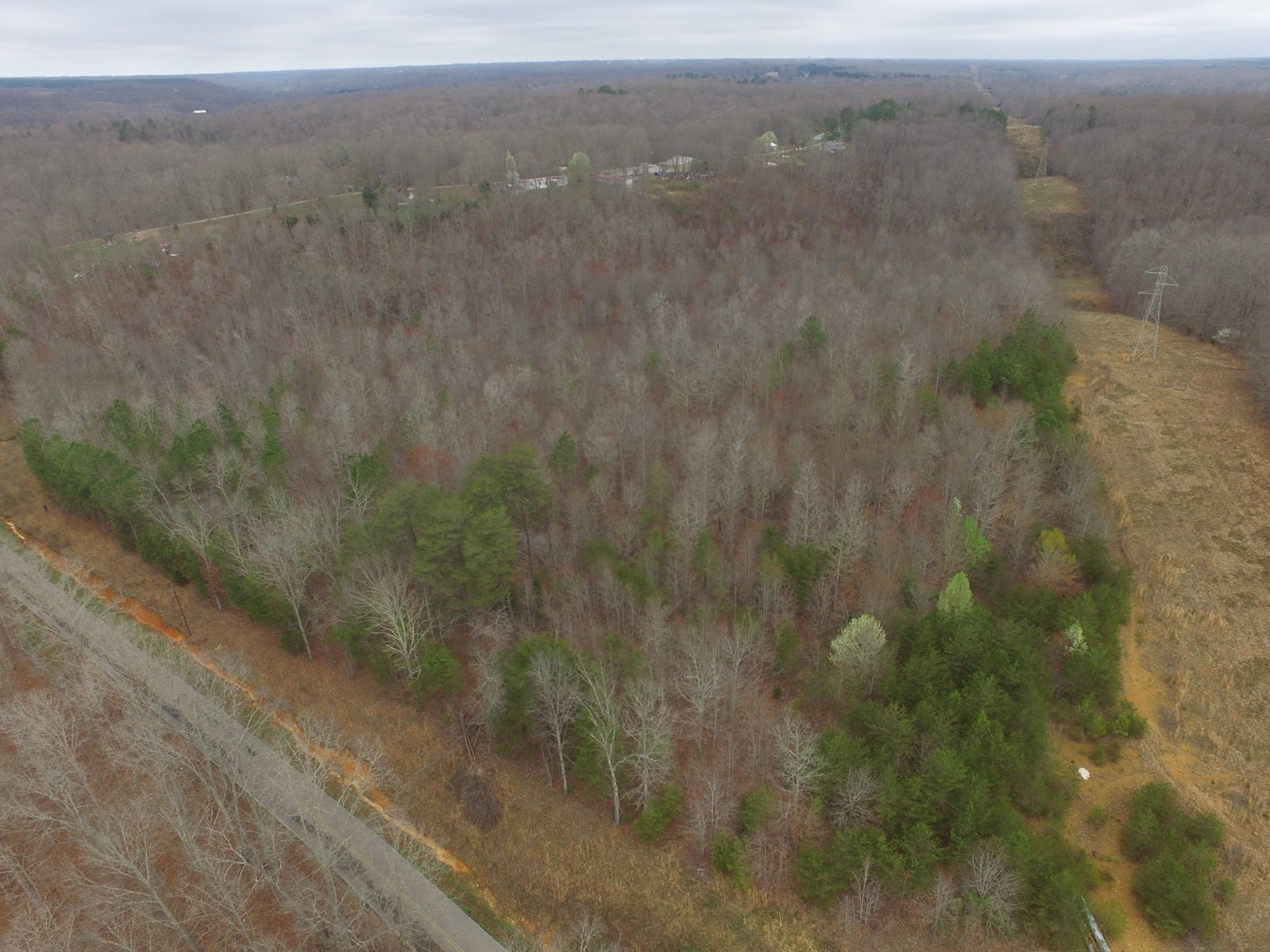 Land for Sale with Acreage for Sale in Hohenwald, Tennessee