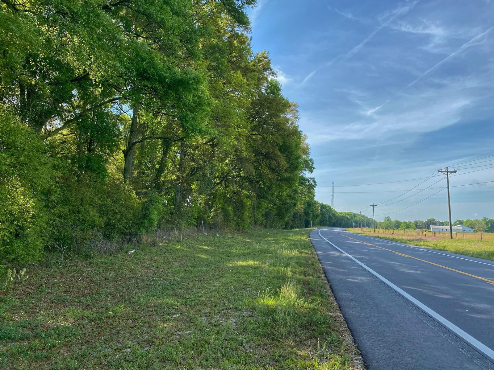 VACANT LAND IN BELL FLORIDA!