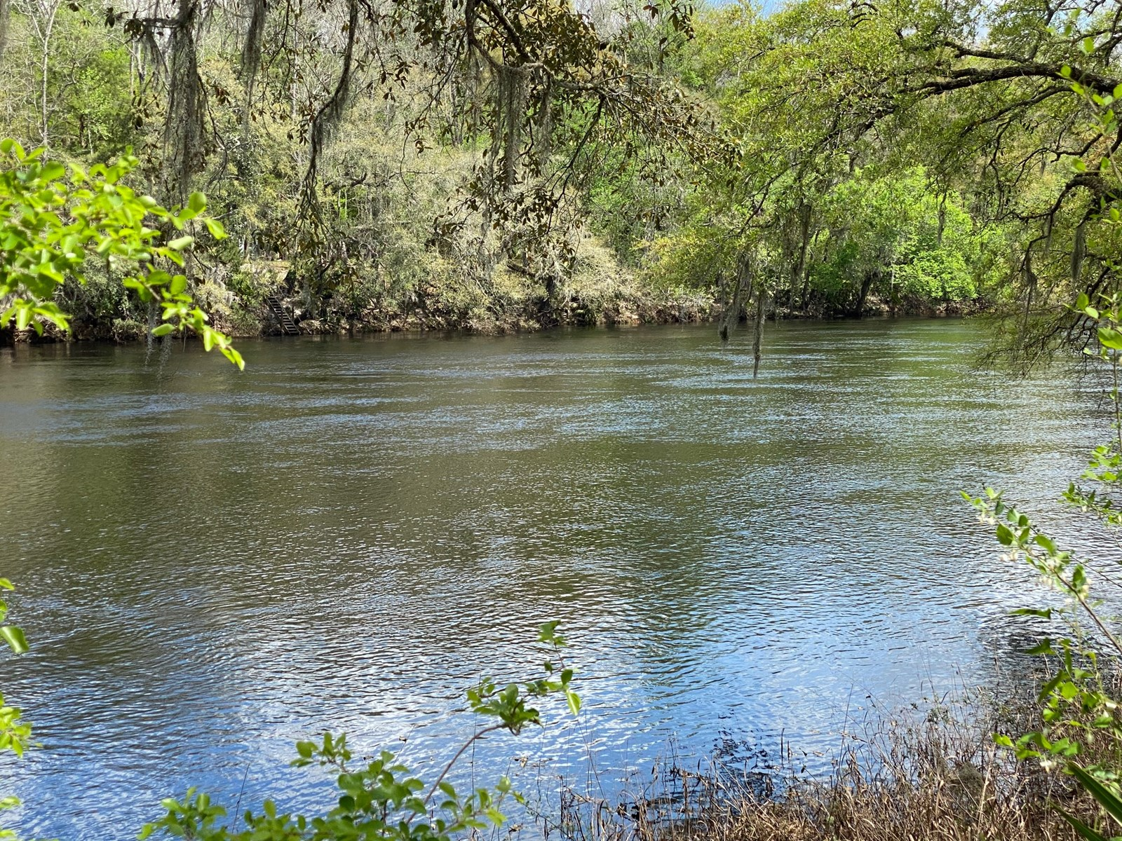 7.80 ACRE RIVERFRONT PROPERTY ON SUWANNEE RIVER!!!!