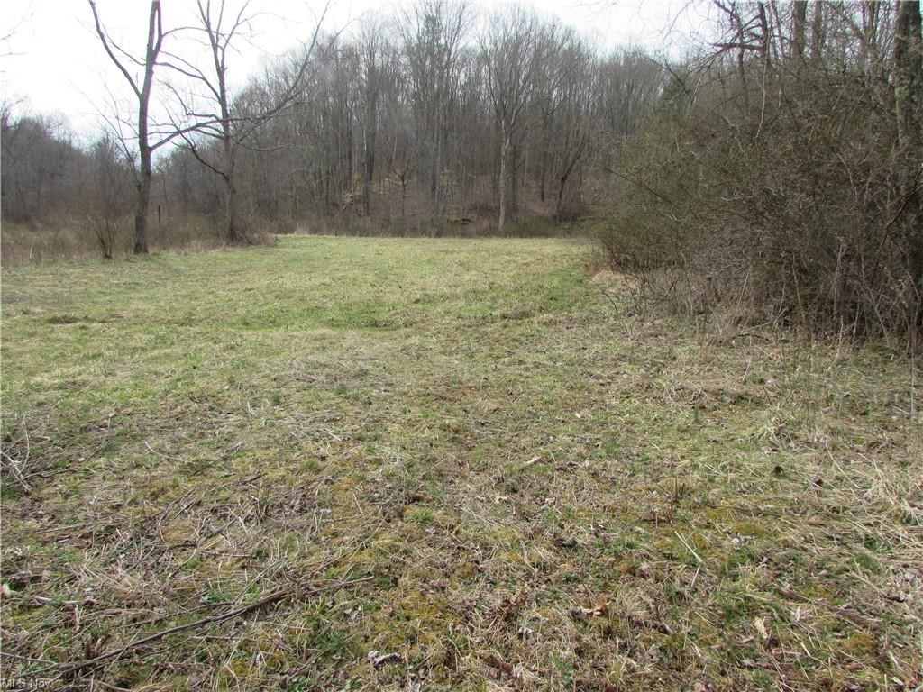 127.92 Acres of WV Land for Building, Hunting or Recreation.