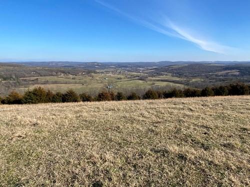 95 Acre Cattle Farm For Sale-Huntsville, Arkansas