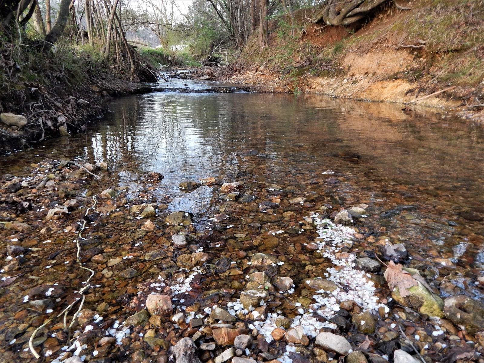 Sweeping Views, Springs and Creek on 44 Acres!