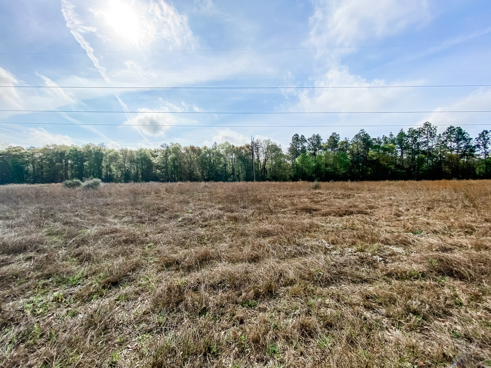 Land for Sale in the Country in Samson, AL