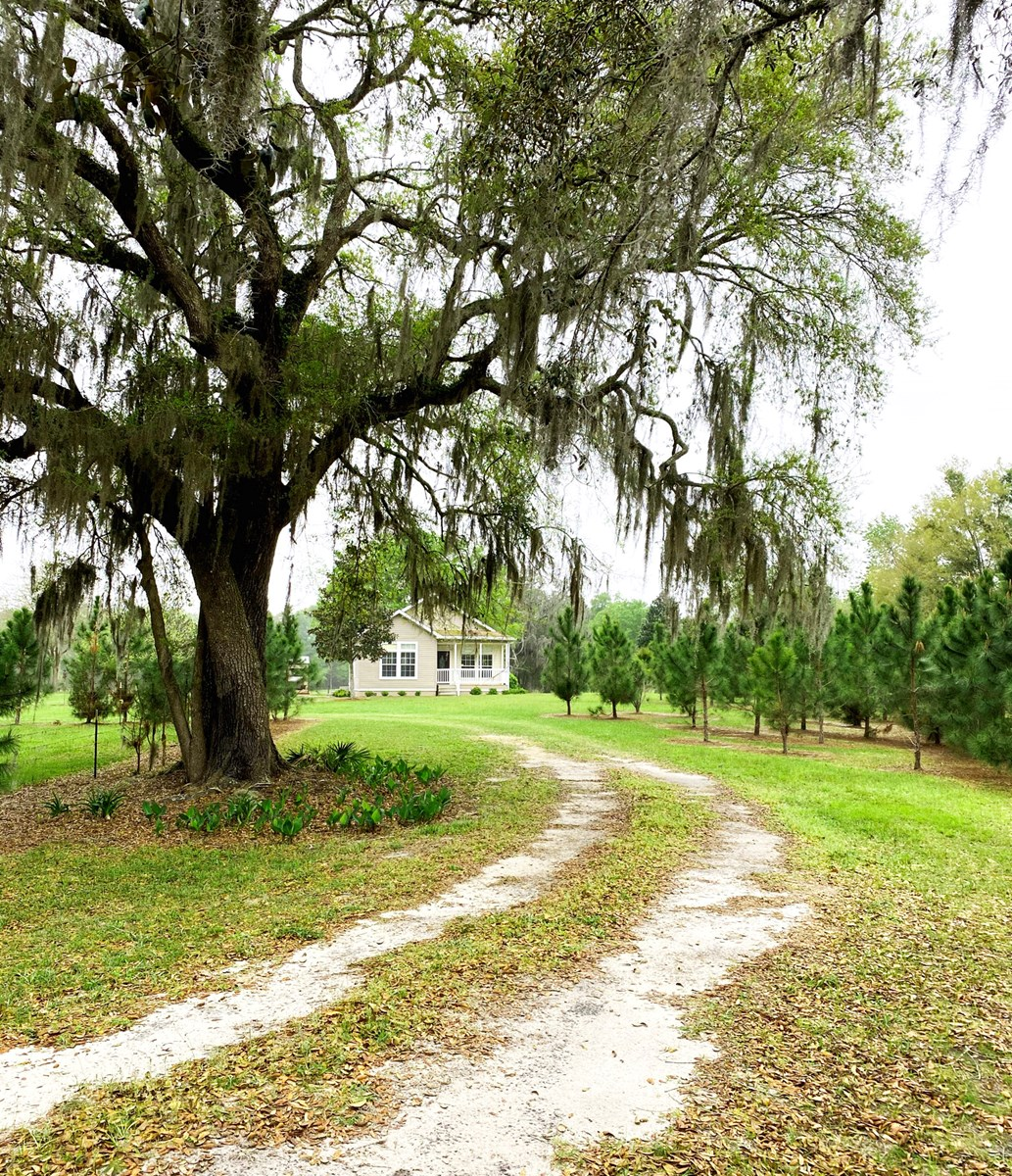 BEAUTIFUL COUNTRY HOME ON 10 ACRES IN BELL, FL