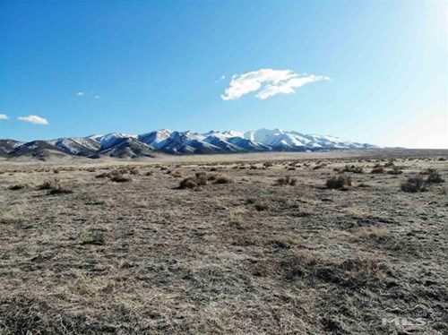 220 acres for sale with mineral rights