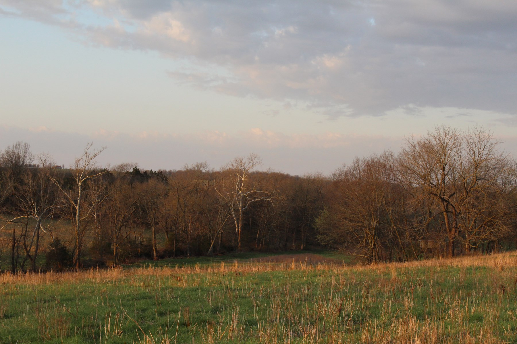 Open Pasture Land With Well &  Many Potential Building Sites