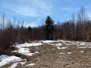 100 ACRES MOUNTAIN VIEW LAND FOR SALE