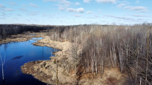Buildable/Hunting Land for Sale in Mille Lacs Co