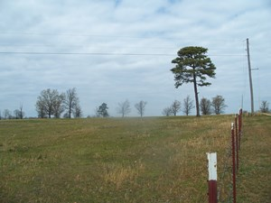 NE OK HUNTING OR CATTLE RANCH, DELAWARE CO, WOODED AND CLEAR