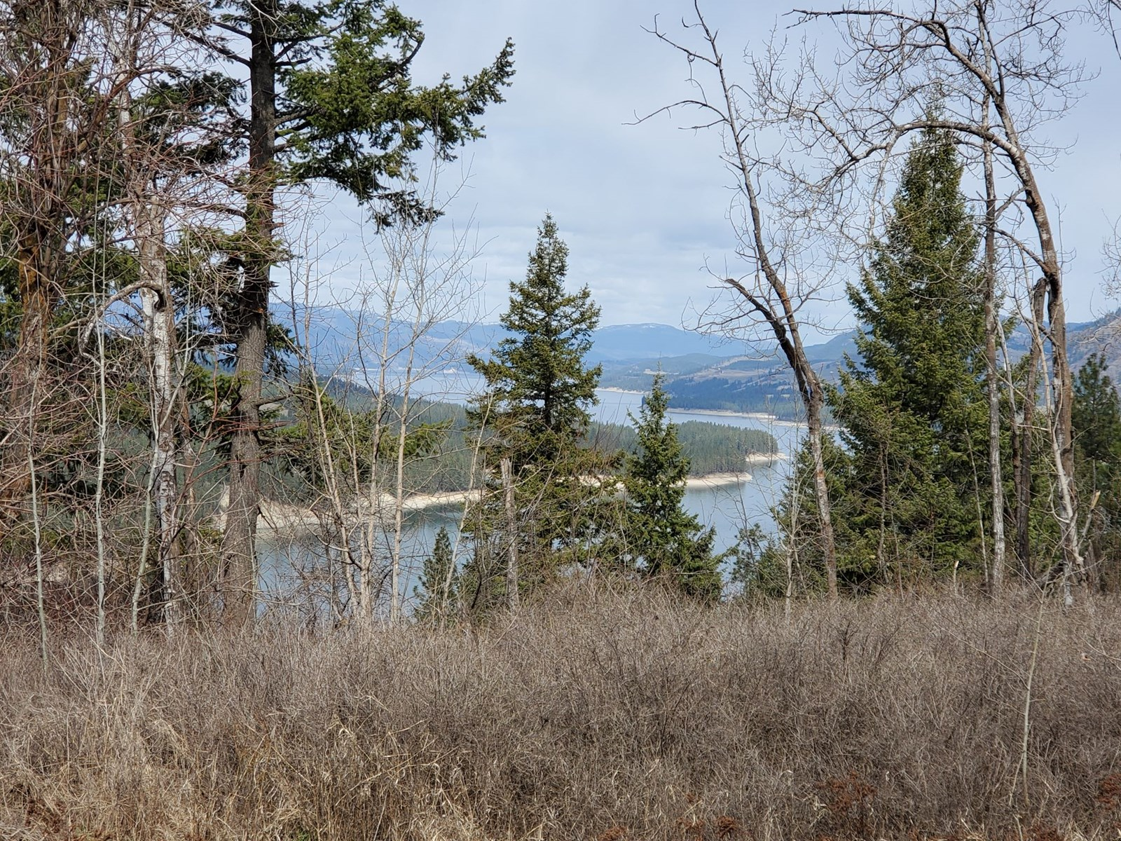 42 Acres of Recreational/Hunting Property with Lake Views