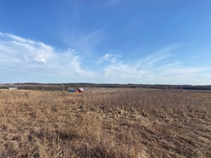 JOHNSON COUNTY IOWA LAND WITH BUILD SITE AND BARNS FOR SALE