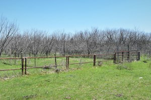 LAND IN CENTRAL TEXAS FOR SALE!15 ACRES WACO TX 76708