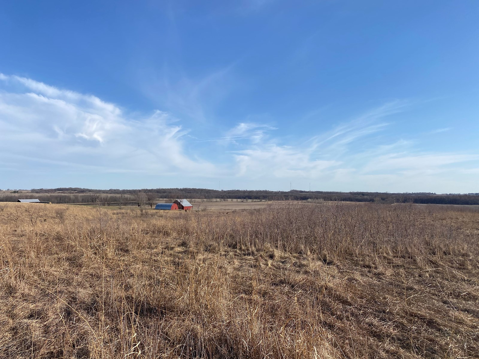 Johnson County Iowa Land with Build Site, Barns, and Income