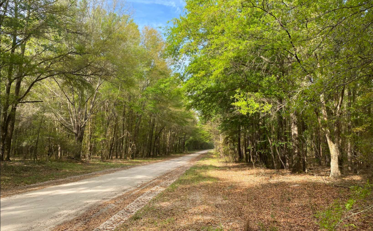 4 Acre Lot for Sale in Live Oak, Florida