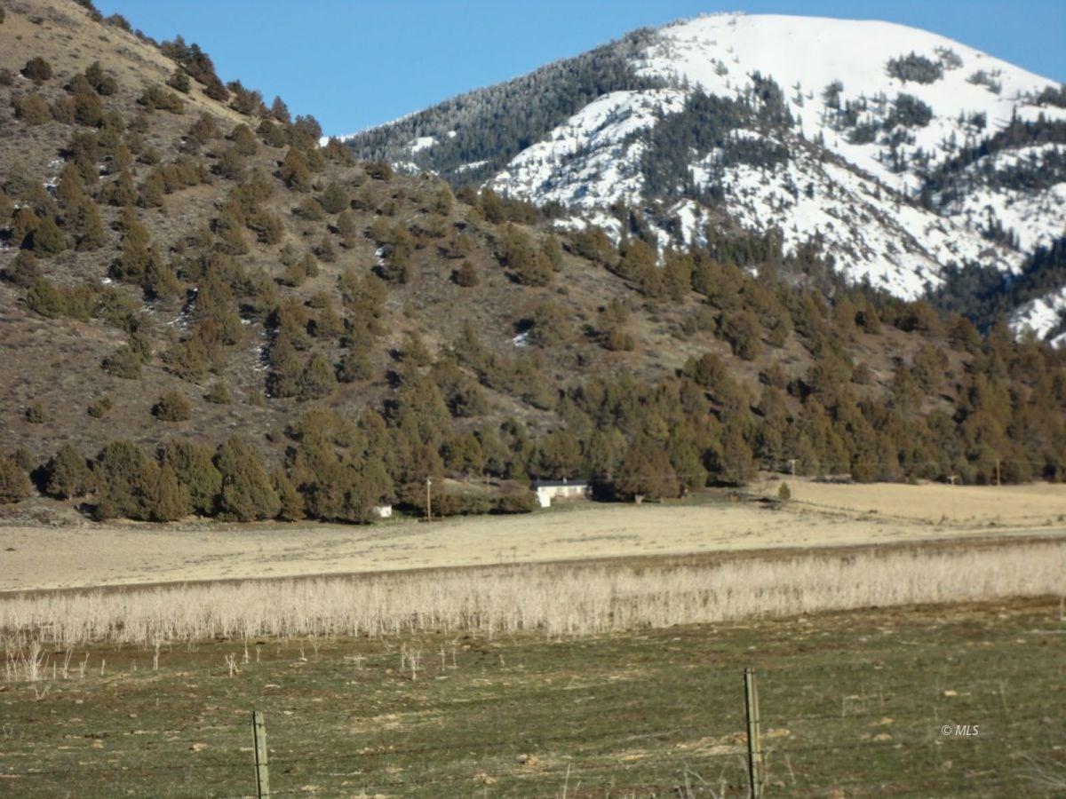 Updated 3bed/2bath 1551 sq.ft 80 acres adjacent Forest Land