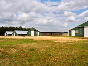 4 HOUSE POULTRY BROILER FARM FOR SALE SW MISSISSIPPI
