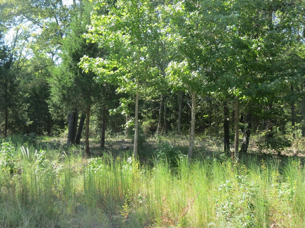 EAST TEXAS LOT FOR SALE GARDEN VALLEY ADDITION TO BUILD ON!