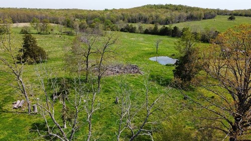 40+/- Acres In Southeast Missouri Ozark Foothills