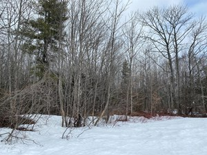 MAINE TIMBER & RECREATION LAND FOR SALE