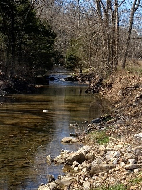 Southern Missouri Ranch Land for Sale - Live Water