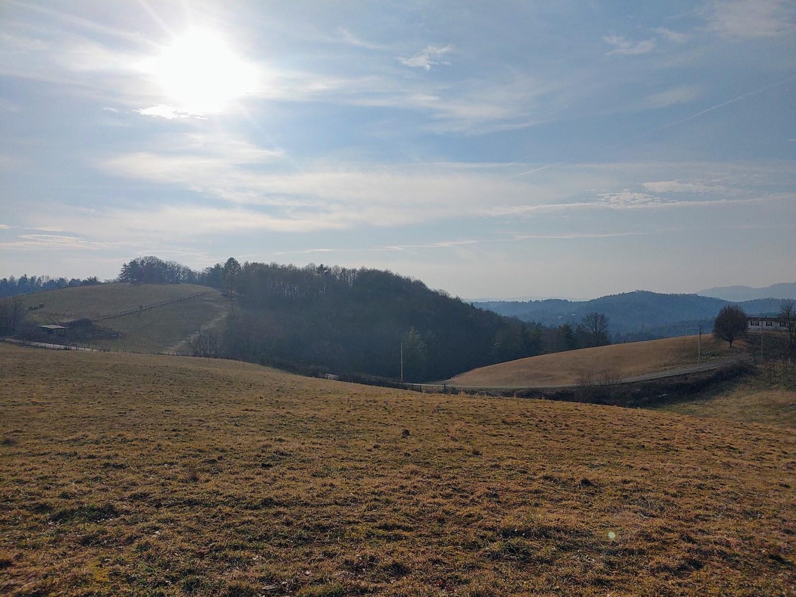Pastureland for Sale in Willis VA!