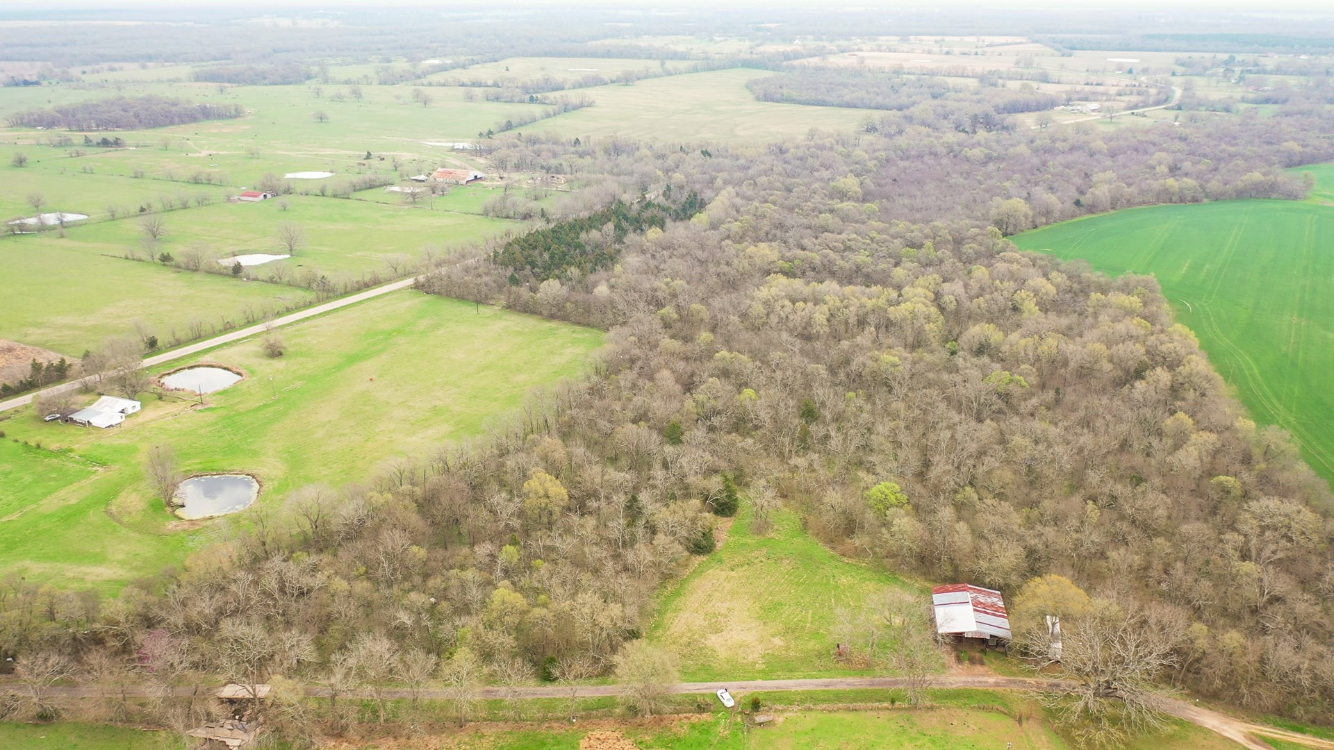 Recreational Land For Sale In Bogata Texas Red River County