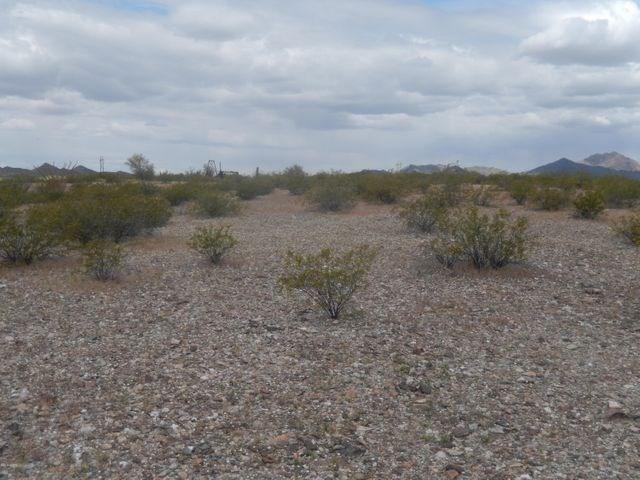 Salome, AZ 40 Acres