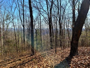 LAND FOR SALE IN EMINENCE MO-HUNTING, RECREATIONAL, RIVER