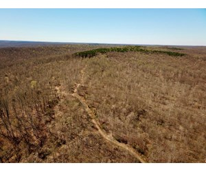 Large Hunting Tract for Sale Borders Hoosier National Forest