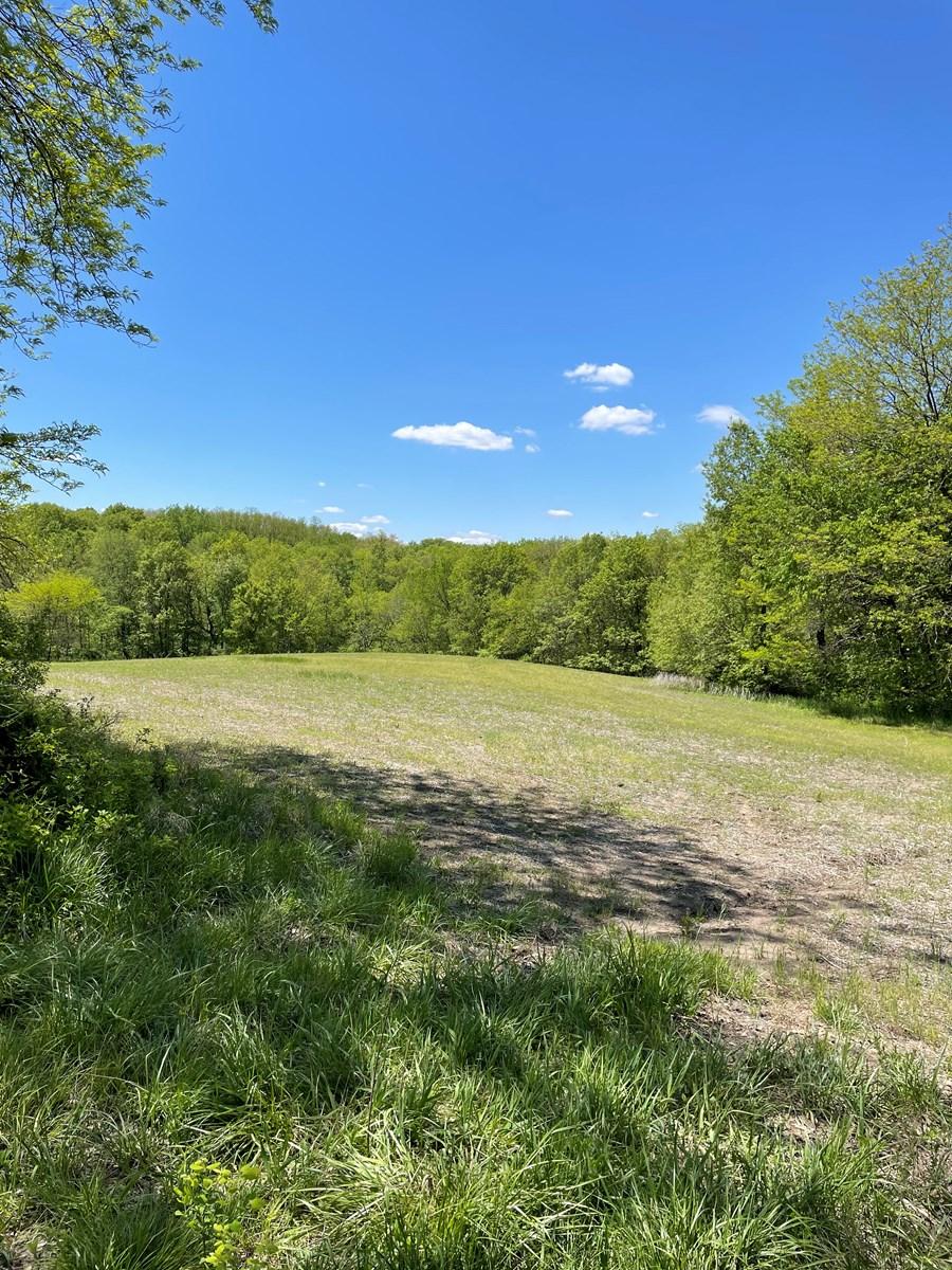Row Crop, Pasture and Hunting - 100+/- Acres in Dekalb, MO