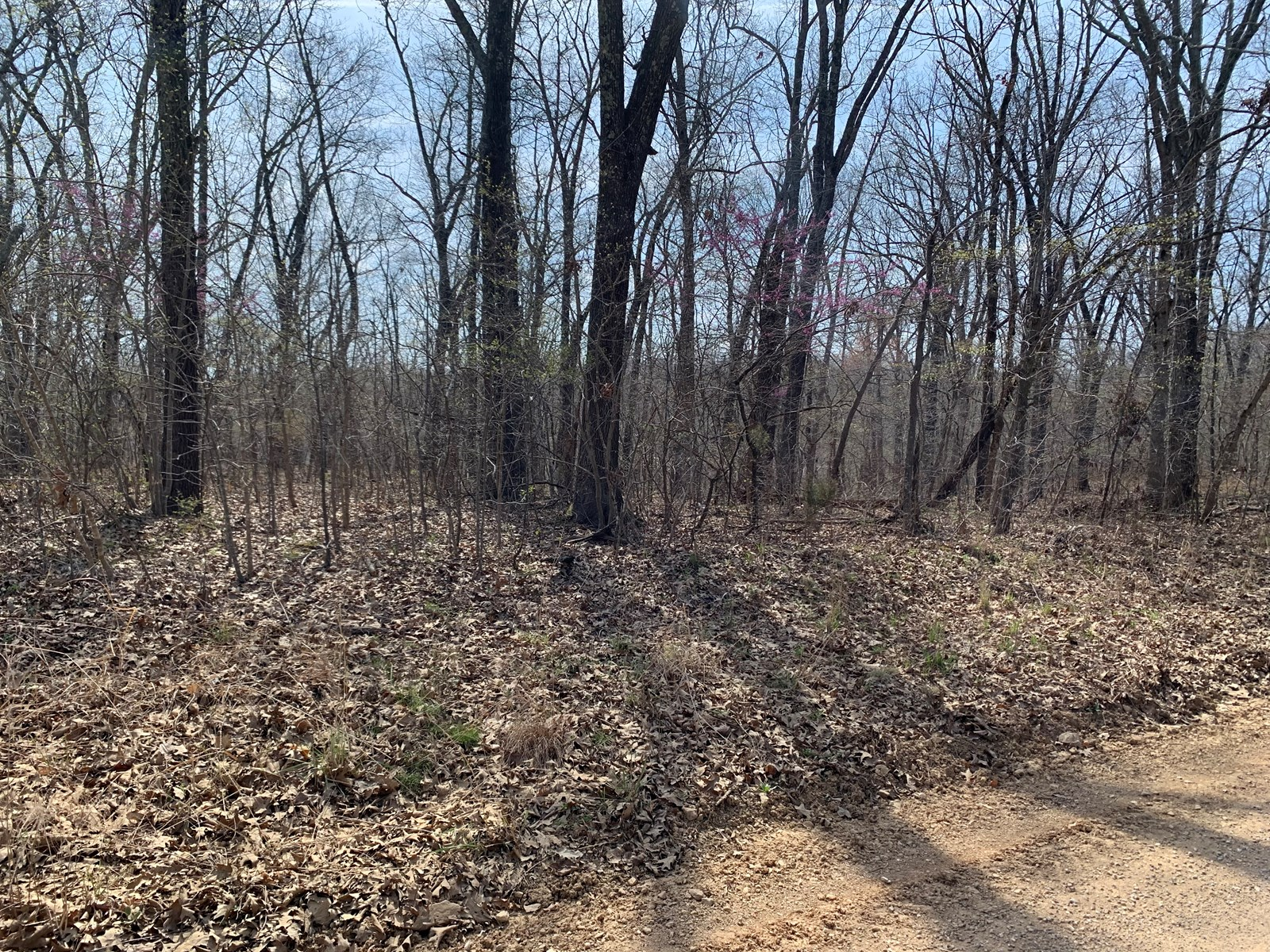 10 Wooded Acres Near Lake of the Ozarks, Stover Mo.