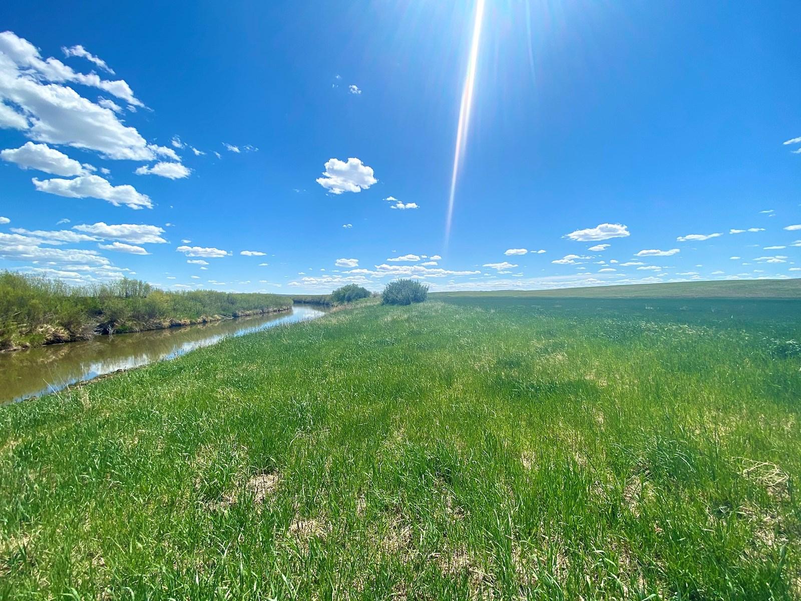 Hay Base Farm For Sale Near Saco Montana