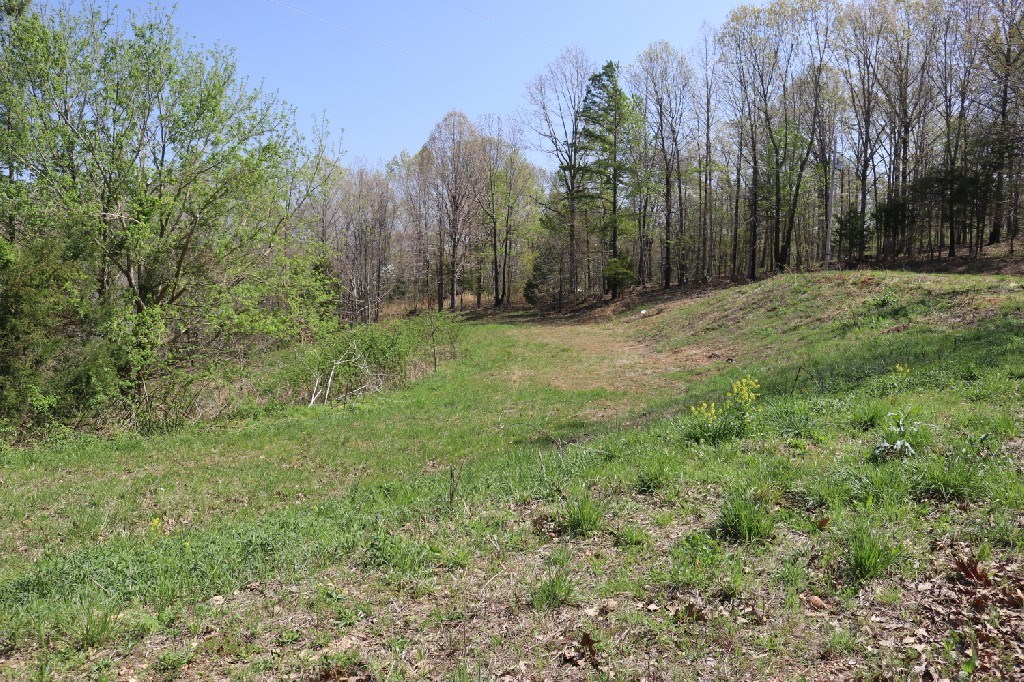 Perfect 3 Acres for Your Weekend Getaway