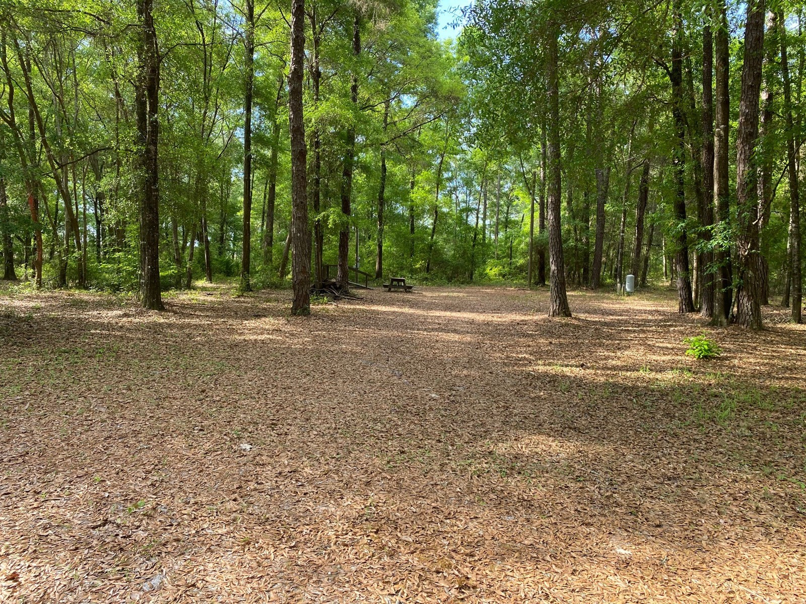RIVER SUBDIVISION LOT IN MAYO, FL WITH WELL, SEPTIC, POWER
