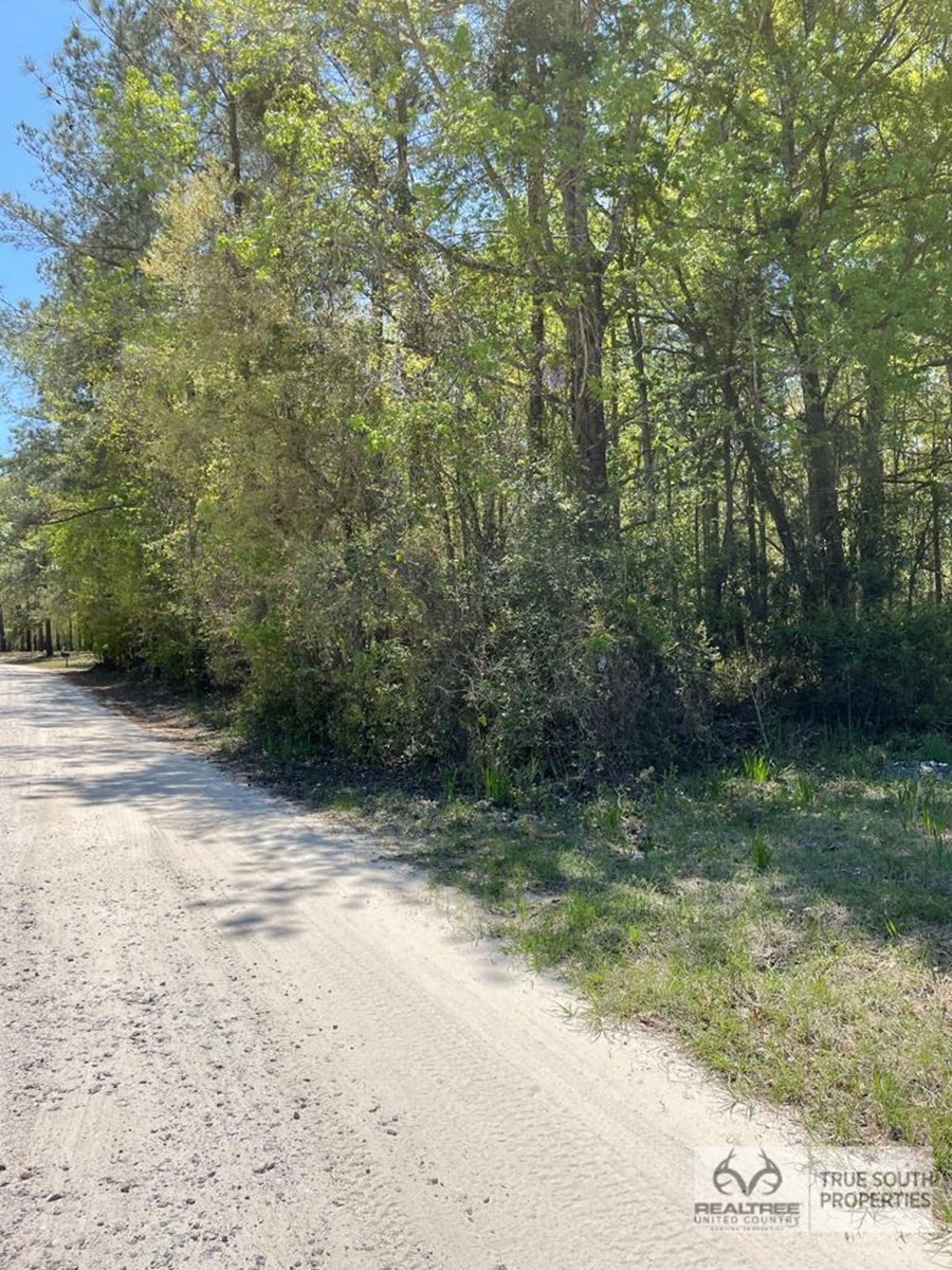 Ridgeland, SC Jasper Country Estate Homesite