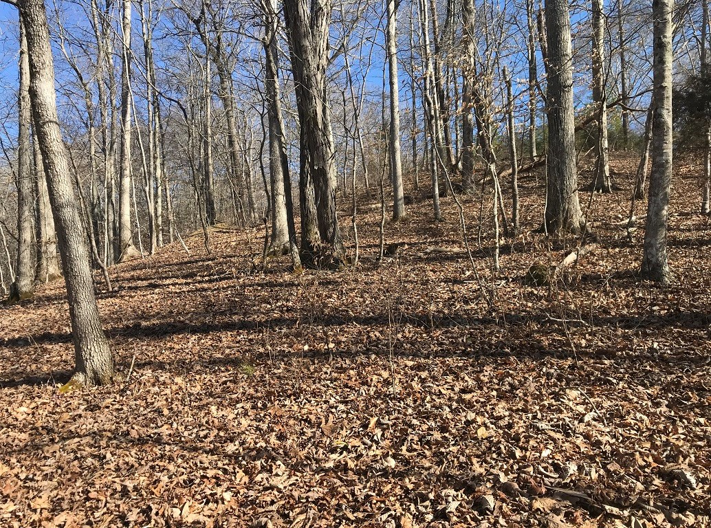 East Tennessee Land for Hawkins County