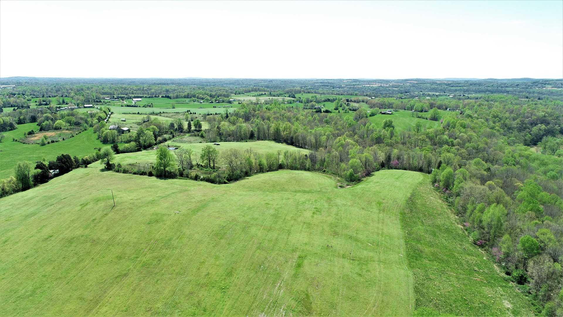 79 Acres For Sale in Green County, KY