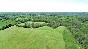 FARM FOR SALE IN GREEN COUNTY, KY